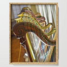 Antique Harps in Nice, France Serving Tray