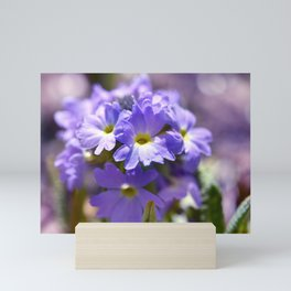 Purple Primrose Mini Art Print
