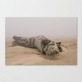 Fog On The Beach Canvas Print