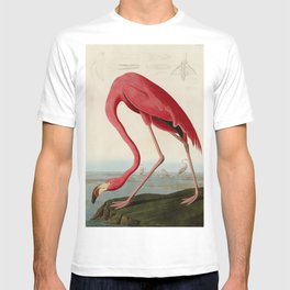 American Flamingo by John James Audubon, Vintage Illustration T-shirt
