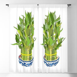 Lucky Bamboo in Porcelain Bowl Blackout Curtain