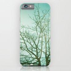 Cold Light Slim Case iPhone 6s