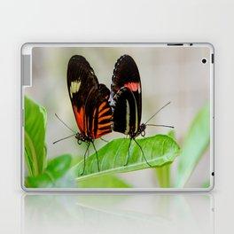 Butterfly Pair Laptop & iPad Skin