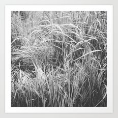 High Grass (In The Thick of It) Art Print
