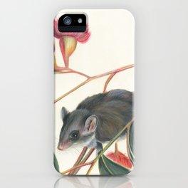 Australian Possum Glider Botanic Art iPhone Case
