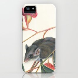 Australian Possum Glider Botanic Art iPhone Case