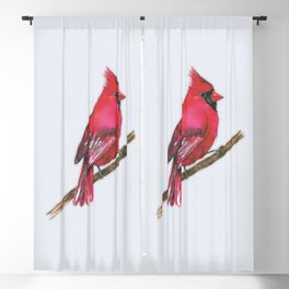 A Northern cardinal watercolor Blackout Curtain
