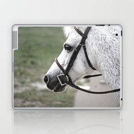 Fleabit Gray Pony Laptop & iPad Skin