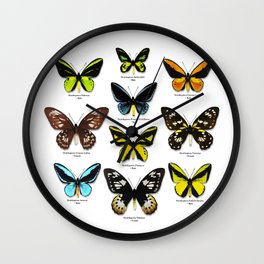 Butterfly012_Ornithoptera Set1 on White Background Wall Clock