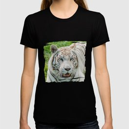 THE BEAUTY OF WHITE TIGERS T-shirt