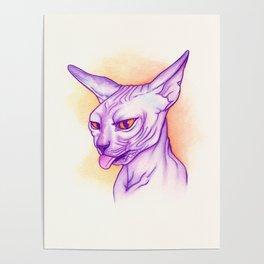 Sphynx cat #02 Poster