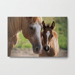 Horse Family Metal Print