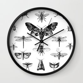 FLUTTER ... Wall Clock