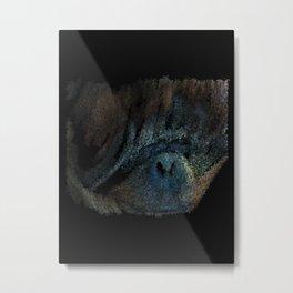 Orangutan from Indonesia - 136 Metal Print