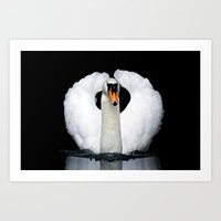 black swan Art Prints featuring Swan by lebanmax