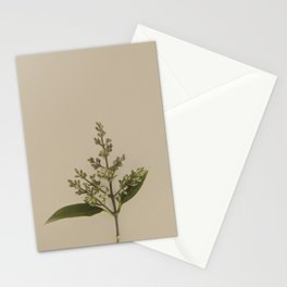Nature Watch No. 6 Stationery Cards