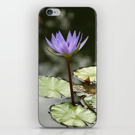 Beauty At The Pond iPhone Skin