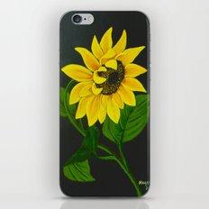 Gracefull iPhone & iPod Skin