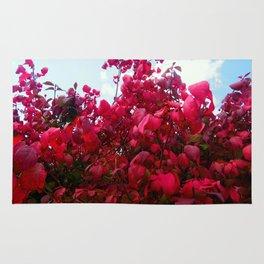 Foliage 6 Rug
