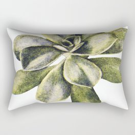 Vintage Succulent Watercolor Rectangular Pillow