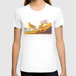 Buff-breasted Sandpiper Bird T-shirt