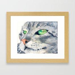 Biki the Cat Framed Art Print