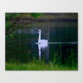 Swan Ghost Canvas Print