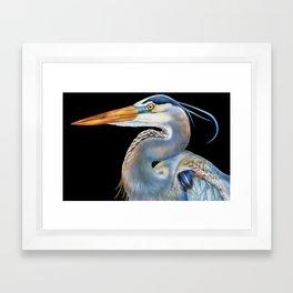 Great Blue Heron Framed Art Print