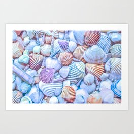 Seashells Everywhere Art Print