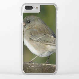 Little Junco Clear iPhone Case