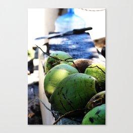 Coconut Fresh Canvas Print