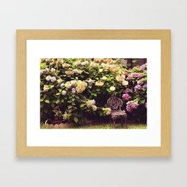 "Hydrangea - ""Peaceful Garden"" |  Photography Framed Art Print"