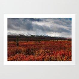 The Red Field Art Print