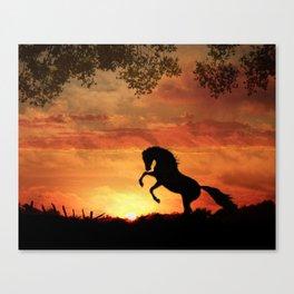 Sillouette Stallion Canvas Print