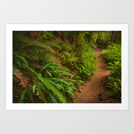 Trail through the forest Art Print