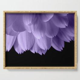 Ultra violet purple flower petals black Serving Tray