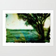 Cottonwood Colors Art Print