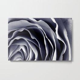 Purple Rose Macro Metal Print