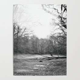 Spirits On The Breeze Poster