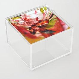 Bouquet Acrylic Box