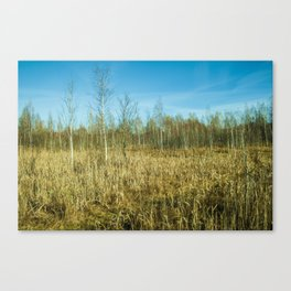 The Greatest View Canvas Print