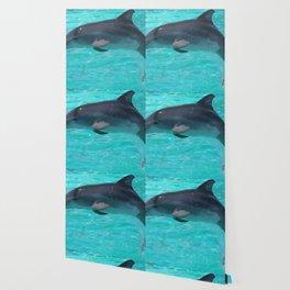 Baby Dolphin Wallpaper