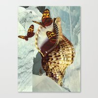 shell Canvas Prints featuring Shell by David Delruelle
