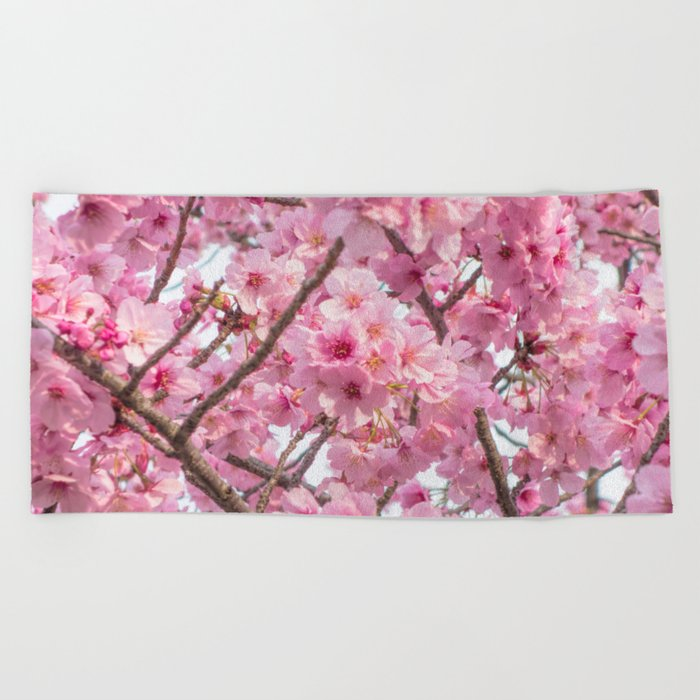 Cherry Blossoms in spring Beach Towel