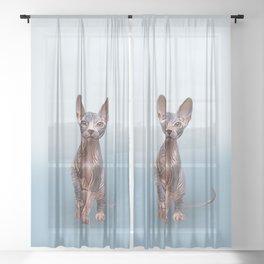 Drawing Sphynx kitten 5 Sheer Curtain