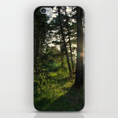 Entering Narnia iPhone & iPod Skin