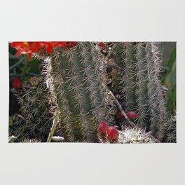 New Mexico Cactus Rug