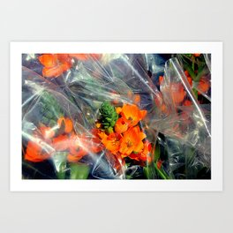 There's Always Room For Cello Art Print