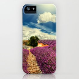 Beautiful image of lavender field iPhone Case
