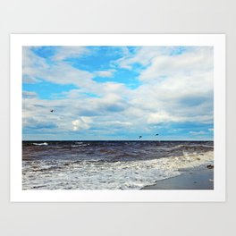 Flying Cormorants Art Print